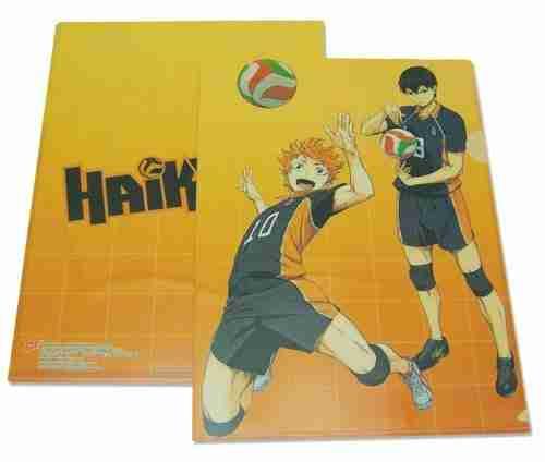 Haikyu!! Hinata & Kageyama File Folder