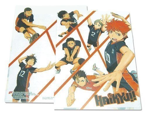 Haikyu!! Team Characters File Folder