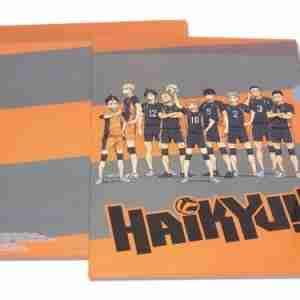 Haikyu!! Team File Folder